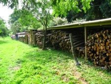 Logs For Woodburners in Kent.