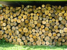 Logs For Woodburning Stoves in Kent.